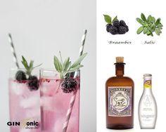 Monkey 47 Gin Tonic Recipe