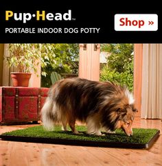 Pup-Head® Portable Dog Potty from PupGear Corporation