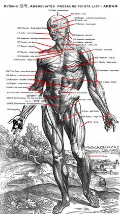 Ninjutsu Techniques | Kyusho - Abbreviated pressure points chart in Ninjutsu:
