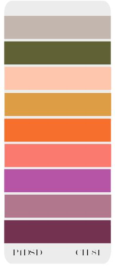 Color Chart 81