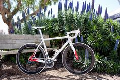 Colnago road bicycle with disc brakes.