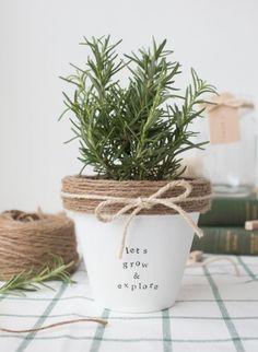 Herb centerpiece ideas