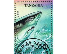 2 Postage Stamp Sheets - Shark- Fish - Sea