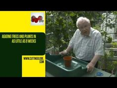 PROPAGATING TREES AND PLANTS MADE EASY Propagation, Make It Simple, Globe, Trees, Make It Yourself, Easy, Plants, Speech Balloon, Tree Structure