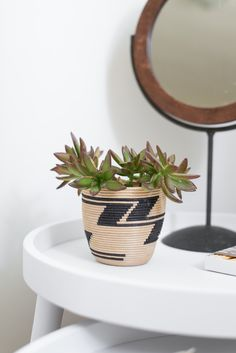 Side table succulent.