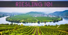 Riesling has a reputation for being very sweet and easy to drink, but it isn't always sweet. Learn how to buy the style of Riesling you will like.