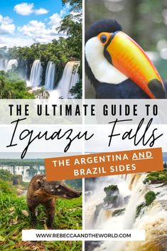 Should you visit Iguazu Falls Argentina or Iguazu Falls Brazil? I say both! Read on for the ultimate guide to visiting Iguazu Falls, including what to see and do both sides of the waterfalls, how to get to Iguazu Falls and where to stay near Iguazu Falls.   #argentina #brazil #iguazufalls #waterfalls #puertoiguazu #fozdoiguazu #naturalwonders Puerto Iguazu, Travel Tips, Travel Destinations, In Patagonia, Argentina Travel, Cultural Experience, Worldwide Travel, South America Travel, Beautiful Places To Visit