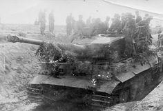 Tiger tank 28