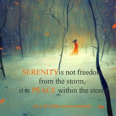 Serenity is not freedom from the storm, it is peace within the storm.  www.ConsciousManifestor.com  #consciousmanifestor #gleeguru #susanscotts #ssscotts #abundance #appbundance #attraction #beyourself #truths #conscious #manifest #power #brave #hope #life #love #dailyquotes #dailyinspiration #dailyaffirmation #affimation #quotes #sayings #principlesofabundance #principlesofconsciousmanifestation #future #past #create #ability #lawofattraction #ability #attract #courage #heart #happiness…