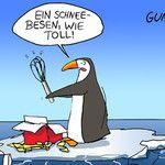 Pinguin Schneebesen