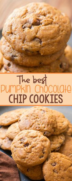 It was hard work but someone had to do it. We searched for the best pumpkin chocolate chip cookies recipe and today we are sharing it with all of you!! via @ohsweetbasil