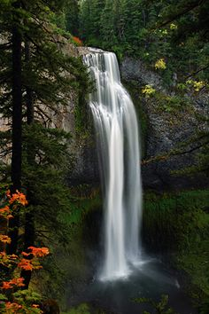 Greg Lief Photography • Waterfalls Salt Creek Falls