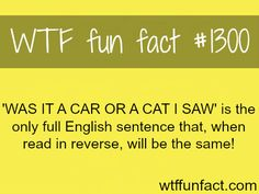 MORE OF WTF FACTS are coming HERE Words, Celebs , movies  and fun facts