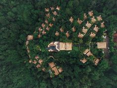 Luxury resort in rain forest by Jacob Lund Photography on @creativemarket
