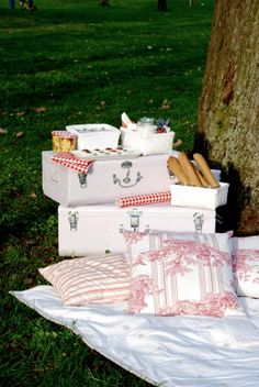 What a great idea for a BBQ or picnic. Picnic Time, Summer Picnic, Picnic Set, Company Picnic, Fruit Company, Romantic Picnics, Picnic In The Park, Baby Shower, Al Fresco Dining