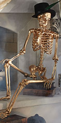 Glam up your Halloween décor with a Gold 5 ft. Skeleton. Hang him from the ceiling, pose him in a chair, or dress him in a top hat and tails.