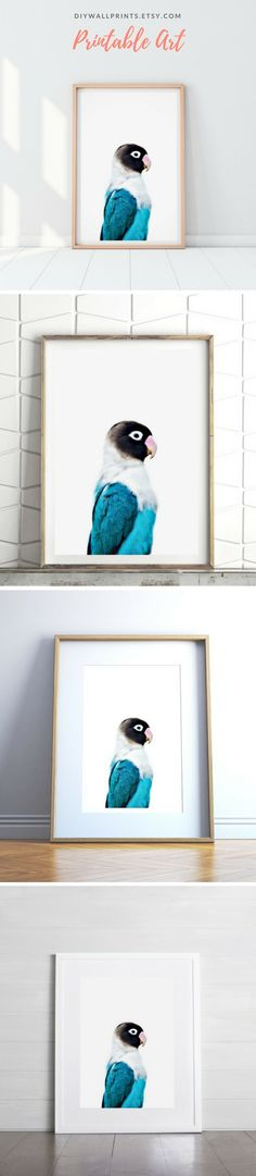 Printable Wall Art by DIY Wall Prints   Download today at diywallprints.etsy.com! Bird Prints, Wall Art Prints, Printing Services, Online Printing, Tropical Animals, Pet Portraits, Printable Wall Art, Diy Wall