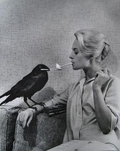 Tippi Hedren and feathered friend take a break before the shoot where he tries to peck her eyes out. She doesn't look scared, but of course, this is a woman who kept a full-grown lion as a pet.
