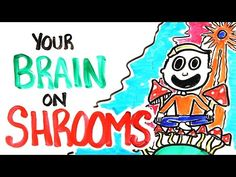 """Your Brain On Shrooms by asapscience: """"How do """"Magic Mushrooms"""" chemically alter your brain? We explain the science of hallucinations in our NEW VIDEO. """" Get the AsapSCIENCE book:. Psychedelic Experience, Psychedelic Drugs, Mind Unleashed, Dangerous Minds, Nursing Notes, What Happened To You, Beautiful Mind, Holistic Healing"""