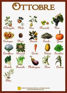 calendario della frutta e verdura di stagione