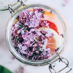 To make this lovely fermented lilac drink, you only need organic raw honey, purified water and a balcony in the sun (or simply your kitchen counter)! And of course, fresh lilac blooms. Add in some other goodies like ginger and grapefruit for a tangy twist, and you've got the perfect healthy spring cocktail! Full recipe #ontheblog.⠀ .⠀ .⠀ .⠀ #liveinspired⠀ #wellnessblogger⠀ #wellpreneur⠀ #mindbodysoul⠀ #mindbodygram⠀ #mindbodyspirit⠀ #raiseyourvibrations⠀ #holisticliving⠀ #greenlifestyle⠀…