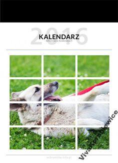 Charytatywny Kalendarzy Korabkowy A3 NA 2016 (6) Dogs, Animals, Animales, Animaux, Pet Dogs, Doggies, Animal, Animais