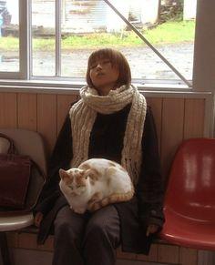 ak47:    mcsgsym:    via up.nm78.com—-ねこになるゆめ(via masayashi)