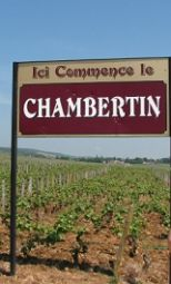 Burgundy bound and down. It was scary and exciting walking up to le Chambertin vineyard!