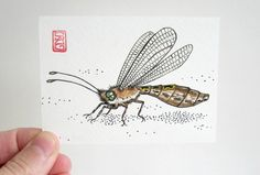 ACEO Owlfly  Insect Art Archival Print  Watercolor by OniOniOniArt, $5.00