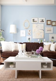 brownblue living room brown furniture wall color
