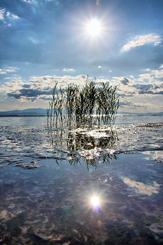 ~~Between ~ grasses reflect in the sea, Kala Nera, Volos, Greece by GLart~~