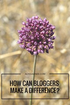 Bloggers are in a unique position to be able to influence their readers. How can your blog make a difference?