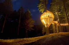 a special treehouse