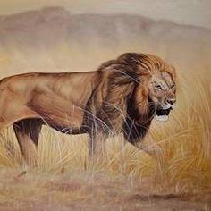 Narshima by Ajay Singh Peelwa Buy Paintings Online, Artwork Online, Online Painting, Wildlife Paintings, Indian Artist, Original Paintings, Art Pieces, Museum, Hand Painted