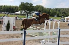 Rob Gage gives this jumper rider tips to help her horse excel