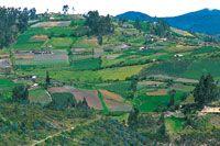 Altiplano de Ipiales, mosaico de cultivos sobre laderas.