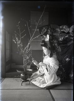 Practicing the art of Ikebana. Vintage photo, Japan. Date and photographer unknown. Her ornate hairpins (kanzashi) suggest that she is, or will be, prostitute or courtesan of some sort.