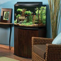 54 Gallon Corner Aquarium With A Custom Built Stand Our