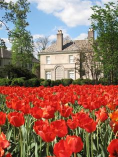 Photos of Sherwood Gardens : Baltimore Maryland