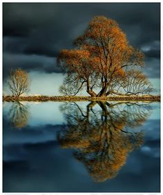 Reflection Photography | The wondrous by reflection photography