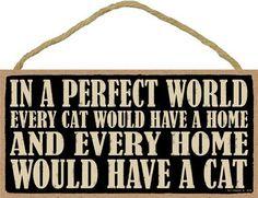 "Please Open Door It/'s A Cat Thing You Wouldn/'t Understand Cat Sign Plaque 5/""x10/"""