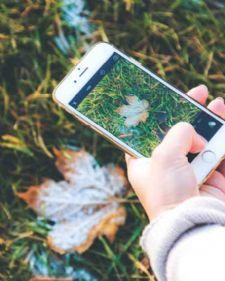 Prizma je nova aplikacija koja transformiše vaše fotografije tako da izgledaju kao umetničke slike poznatih slikara.