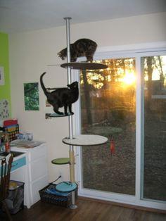 Cat tree made from IKEA Stolmen.