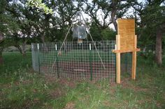 D.I.Y. Game Feeder Corral Trap for Wild Pigs | Wild Wonderings