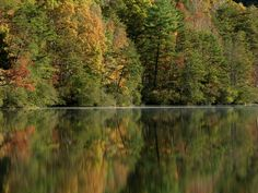 Fall reflections.