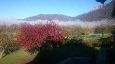 Brume matinale, Alex, Haute Savoie