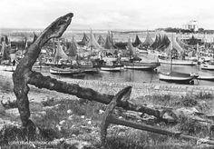 île d'Oléron, le port de La Cotinnière en 1960 - Ile d'Oléron vintage, Charente-Maritime, France