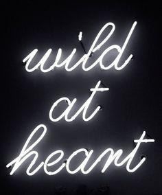 Wild at heart. #wildfox #wildfoxcoutureuk #wild #neon
