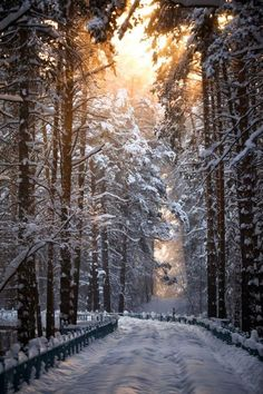 Snowy Path, Sokolniki Park, Moscow, Russia – Amazing Pictures - Plan Your Trip with UKKA.co. Find the Place, do booking Flight, Reserve the Hotel on UKKA.co Free Online Travel Planner