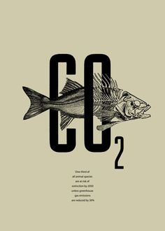 CO2 Poster. Climate change. Extinction.